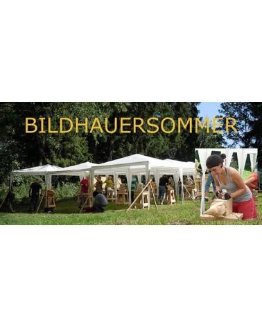 Bandschleifer BS/E